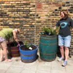 TARA planters (7)